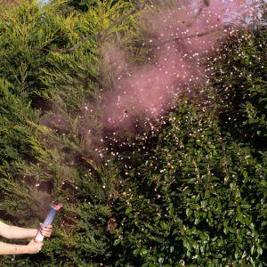Ginger Ray GR-132 Gender Reveal Canon à fumée rose